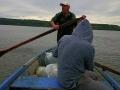zarybianie-jeziora-szczupakiem-8